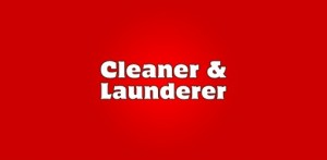 cleaner-launderer-mobile-296-b-512x250